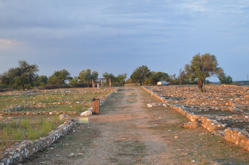 The archaeological site of Olynthos.