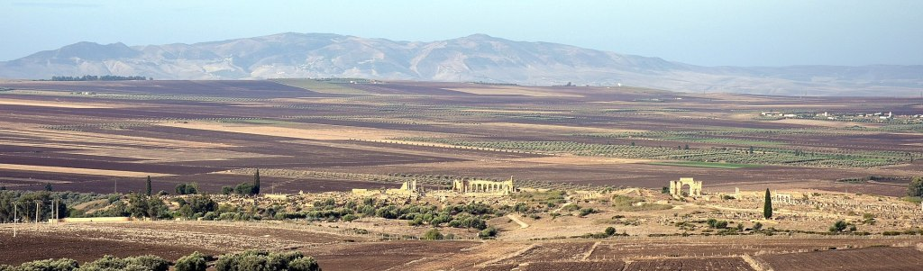 Panoramic view of Volubilis, looking west. There are several marble structures visible in the photo amidst vast fields of crops. Mountains are visible in the background.